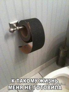 Суровая Челябинская туалетная бумага