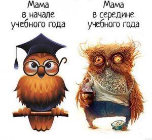 начало и середина учебного года