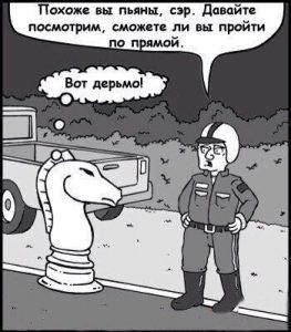 Проблемы шахматных коней