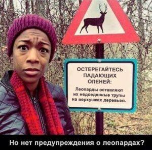 Леопард не опасный