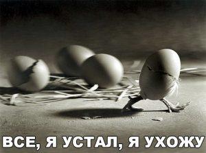 Побег из яйца