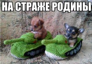 Русские танкисты