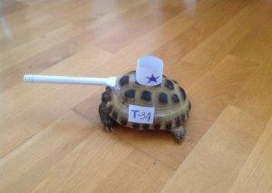 Как сделать танк из черепахи