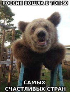 Медведи рады