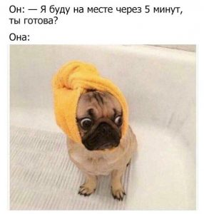 Да готова