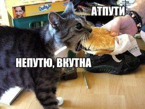 И съем всё