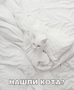 Я не вижу