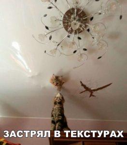 Или в потолке