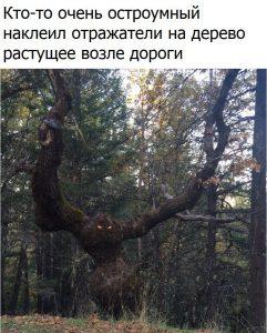 Все боятся