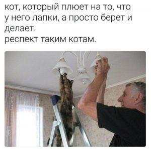 Всем помогают