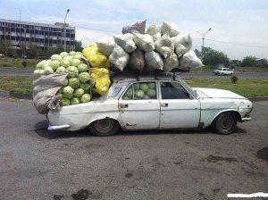 Собрал урожай